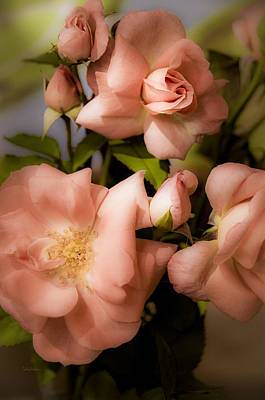 Floribunda Digital Art - Peach Floribunda Roses by Julie Palencia