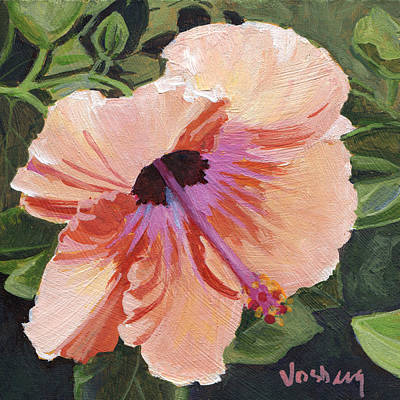Haiku Wall Art - Painting - Peach Hibiscus by Stacy Vosberg