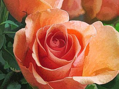 Digital Art - Peach Rose-2 by Doug Morgan