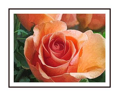 Digital Art - Peach Rose by Doug Morgan