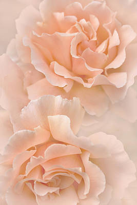 Photograph - Peach Rose Flowers Bouquet by Jennie Marie Schell