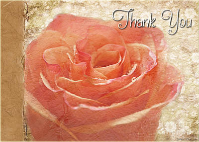 Photograph - Peach Rose Thank You Card by Debbie Portwood