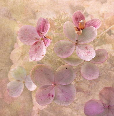 Peachy Pink Floral Art Print by Angie Vogel