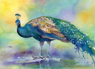 Birds Painting Rights Managed Images - Peacock Royalty-Free Image by Amy Kirkpatrick