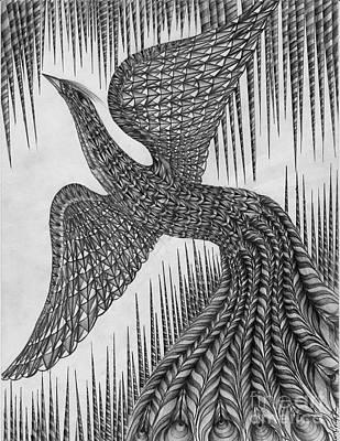 Peacock Art Print by Anca S