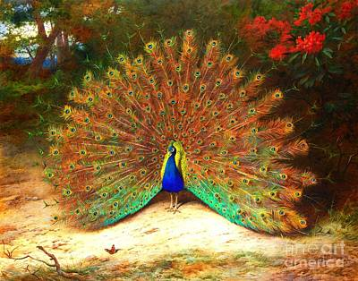 Peacock And Peacock Butterfly Art Print by Pg Reproductions