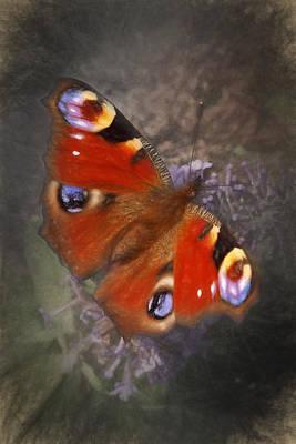 Digital Art - Peacock Butterfly by Ian Merton