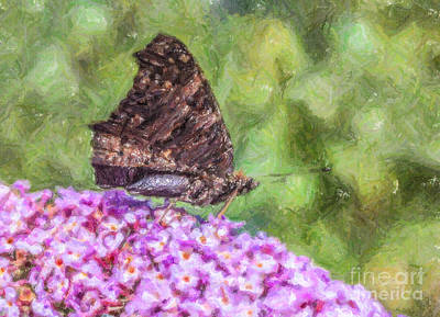Digital Art - Peacock Butterfly Inachis Io On Buddleja by Liz Leyden