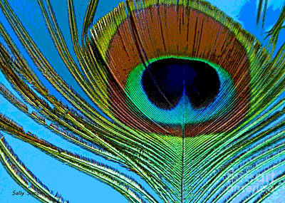 Photograph - Peacock Feather 3 by Sally Simon