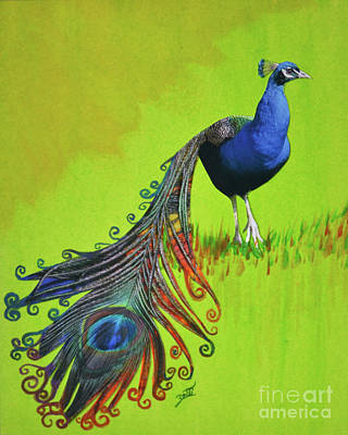 Mixed Media - Peacock Feather by Suzette Kallen