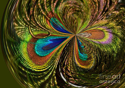 Photograph - Peacock Feathers Abstract by Kathy Baccari