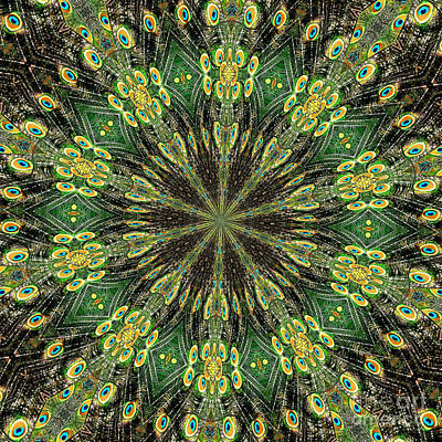 Photograph - Peacock Feathers Kaleidoscope 10 by Rose Santuci-Sofranko