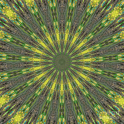 Peacock Photograph - Peacock Feathers Kaleidoscope 5 by Rose Santuci-Sofranko