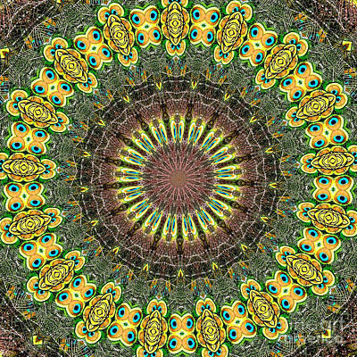 Kaleidoscope Photograph - Peacock Feathers Kaleidoscope 7 by Rose Santuci-Sofranko