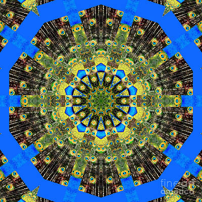 Peacock Photograph - Peacock Feathers Kaleidoscope 9 by Rose Santuci-Sofranko