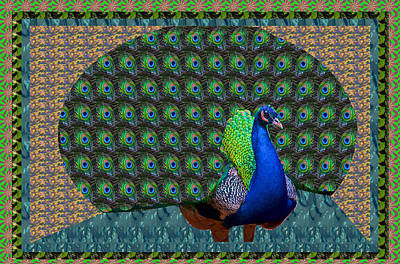 Mixed Media - Peacock Graphic Design Based On Photographic Image Artist Navinjoshi by Navin Joshi