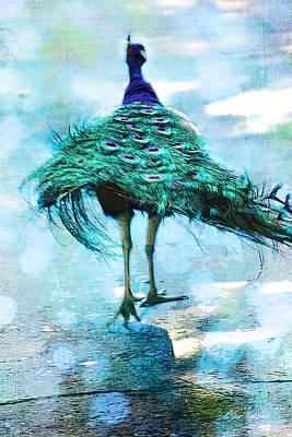 Photograph - Peacock Walking Away by Diana Haronis