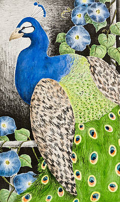 Pheasant Mixed Media - Peacock With Morning Glory  by Jeanette K