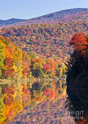 Photograph - Peak Color At Long Pond by Alan L Graham