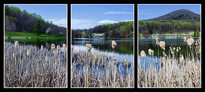 Peaks Of Otter Lodge Triptych Art Print by Steve Hurt
