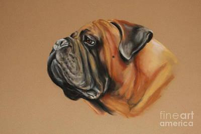 Pastel - Peanut by Adele Pfenninger