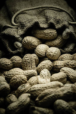 Peanuts In A Gunny Sack I Art Print by Marco Oliveira