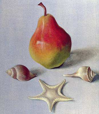 Negative Space Painting - Pear And Shells by Tomar Levine