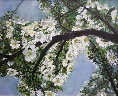 Fruit Tree Art Painting - Pear Blossom  by Lizzy Forrester