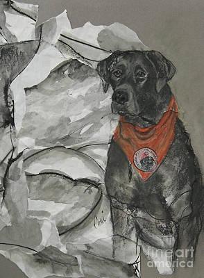 Pearl Aspca Dog Of The Year Art Print by Cori Solomon