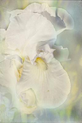Pearl Art Print by Elaine Teague