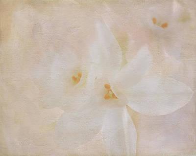 Pearl On Petals Art Print
