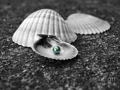 Photograph - Pearls Of Wisdom I by Jai Johnson