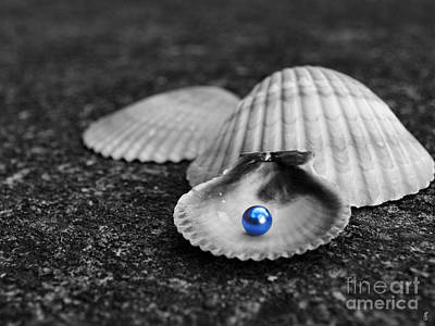 Photograph - Pearls Of Wisdom II by Jai Johnson
