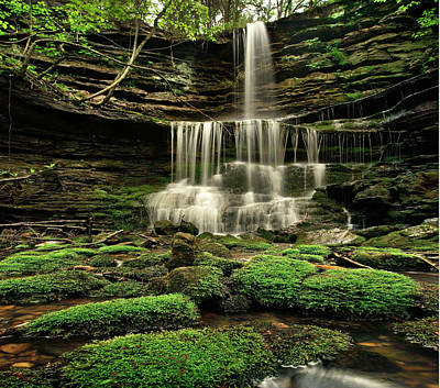 Waterfall Photograph - Pearly Creek Falls Near Buffalo River by Tim Fitzharris