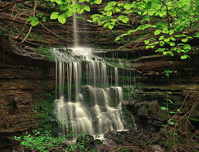 Pearly Creek Falls Surrounded By Green Art Print