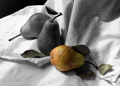 Art Print featuring the photograph Pears - A Still Life by Terri Harper