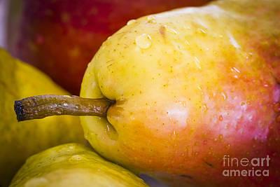 Pears Art Print by Warrena J Barnerd