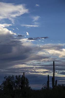 Peaseful Sky Original