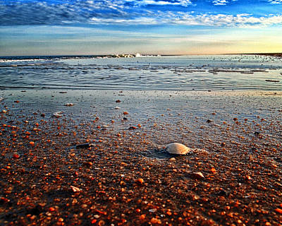 Photograph - Pebble Beach At Fenwick Island by Bill Swartwout Fine Art Photography