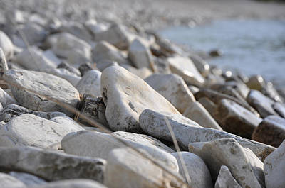 Little Sister Photograph - Pebble Beach by Jeremy Evensen