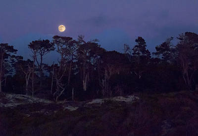 Photograph - Pebble Beach Moonrise by Derek Dean