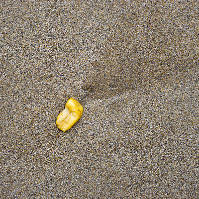 Photograph - Pebble On Beach by Steven Ralser