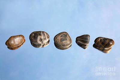 Pebbles And Sky Reflection Art Print by Natalie Kinnear