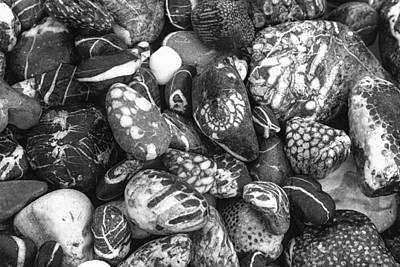 Photograph - Pebbles From Alaska by Judith Barath