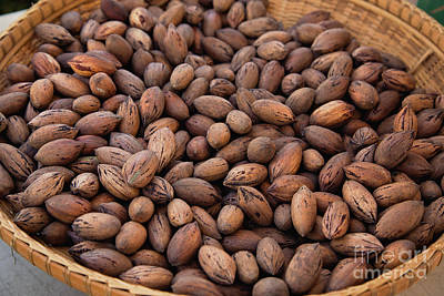 Photograph - Pecan Basket by Sally Simon
