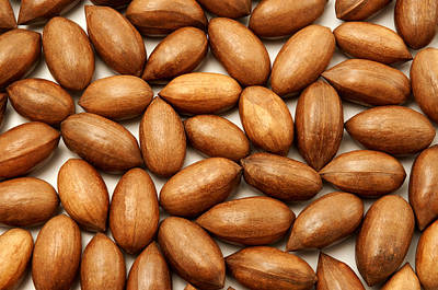 Photograph - Pecan Nuts by Fabrizio Troiani