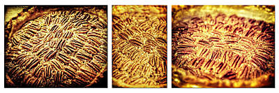 Photograph - Pecan Pie Nostalgia Triptych By Lincoln Rogers by Lincoln Rogers