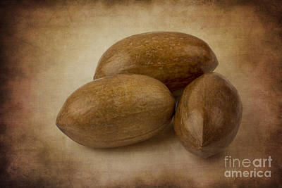Photograph - Pecans. by Clare Bambers