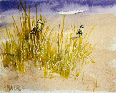 Sand Dunes Painting - Peek A Boo by Pete Maier