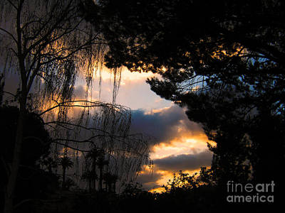Art Print featuring the photograph Peek A Boo Sunset by Janice Westerberg